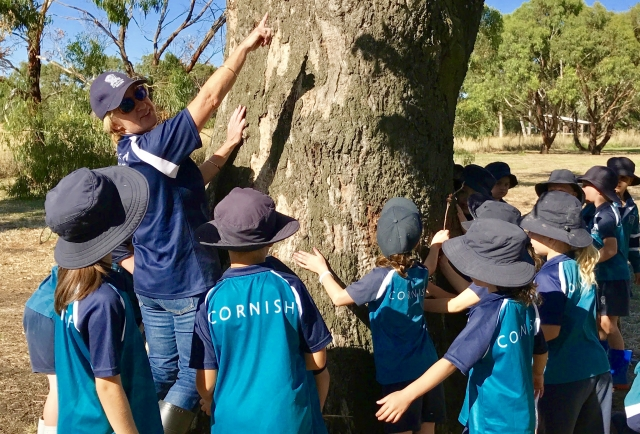 Benefits of connecting land to learning – Year 1 teacher, Mrs Samantha Millar writes for the Sharing PYP blog