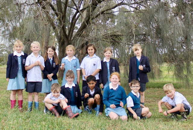 Outdoor learning and maths. Year 1 teachers Alexandra Parrington and Samantha Millar write for 'Prime Number,' the primary journal of the Mathematical Association of Victoria.