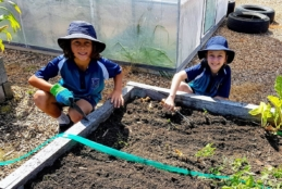 The EcoKids program for Years 3 and 4